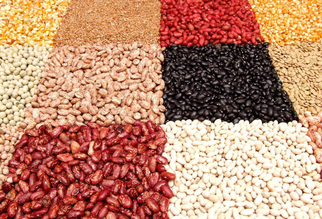 עדשים במגוון צבעים